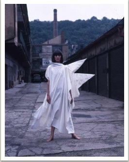 Z kolekce Motýli, 1985-1986