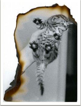 Z cyklu Fire prints, pol. 70. let