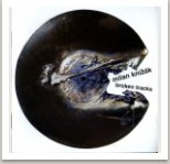 Nové typy destruované hudby, vyd. Guerilla records, 2008